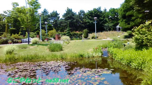 名古屋観光の名所港区のフラワーガーデン「ブルーボネット」のサニーハウス付近の池