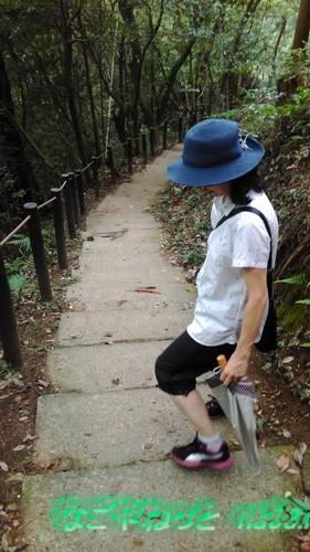 ふくろうヶ城址へのハイキング道(愛知県豊田市)