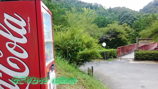 王滝渓谷の王滝湖かけ橋と自販機