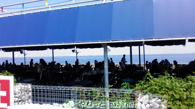 魚太郎の浜焼きバーベキュー場で楽しむ人達