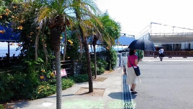 魚太郎の浜焼きバーベキュー場の外回り