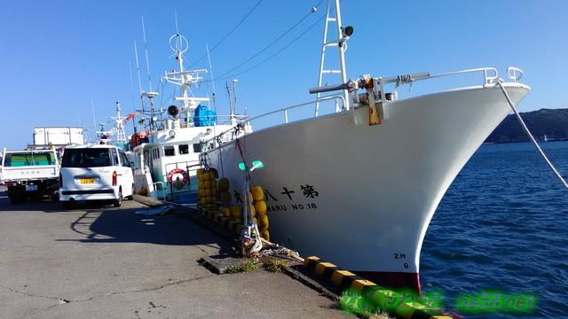 伊豆下田の金目亭さん目の前が漁港釣り船