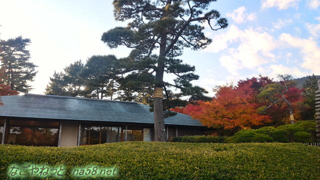 熱海MOA美術館リニューア後の茶の庭からの紅葉風景