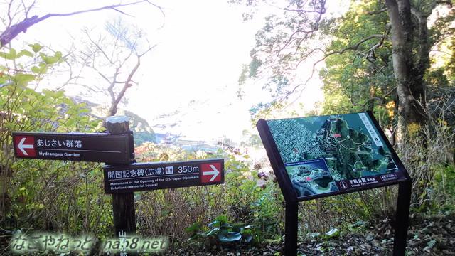 静岡県下田市「下田公園」みはらしのよい景観