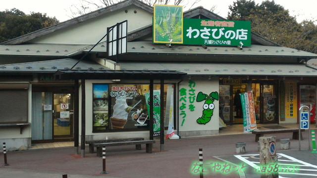 道の駅天城越えのわさびの店