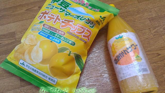 「道の駅開国下田みなと」のお土産みかんジュースとニューサマーオレンジのポテチ