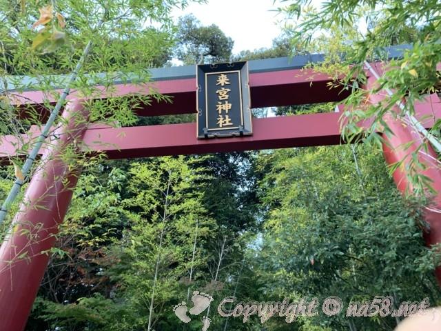 来宮神社(静岡県熱海市)の大鳥居