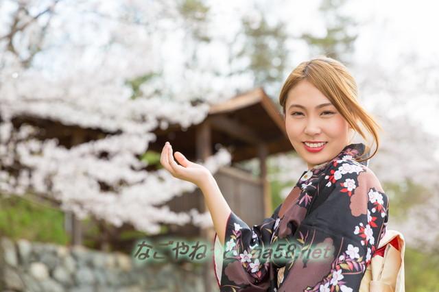 名古屋の「金シャチ横丁」は名古屋城に・どんなお店があるか紹介(名古屋市名城公園)