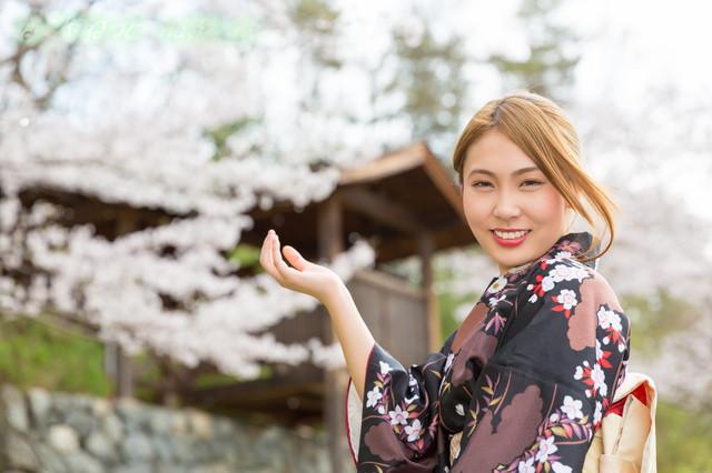名古屋城の金シャチ横丁の紹介