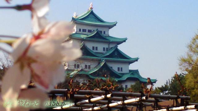 名古屋城と満開のソメイヨシノ