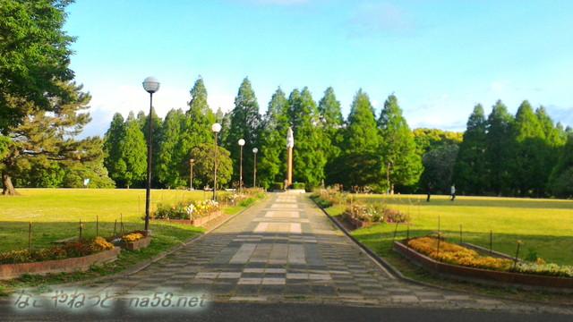 愛知県名古屋市西区山田町 庄内緑地公園広場
