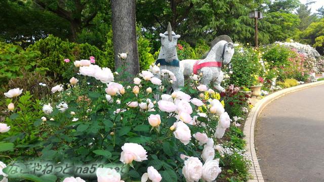 名城公園のバラ園(名古屋市中区)