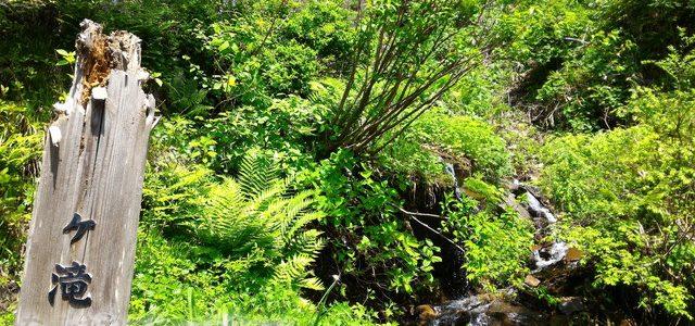 東海一の名瀑「阿弥陀ケ滝」の近く「霧ケ滝」ミスト散策おすすめ(岐阜県白鳥町)