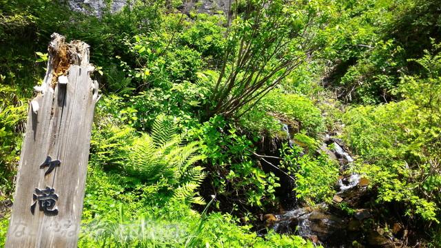 岐阜県白川町の東海の名瀑「阿弥陀ケ滝」木製の表示