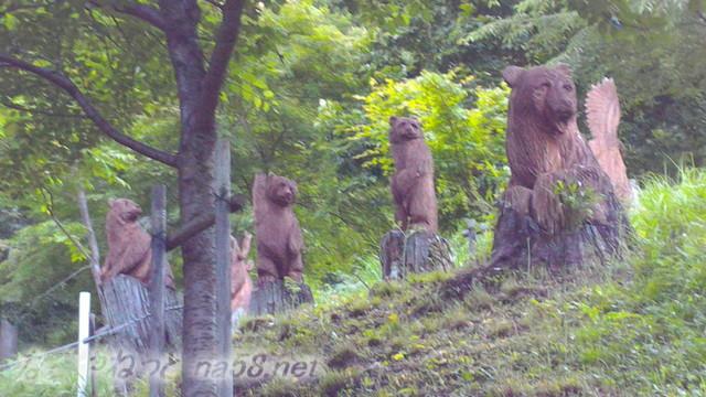 道の駅「星のふる里ふじはし」の切り株動物園の熊やワシ