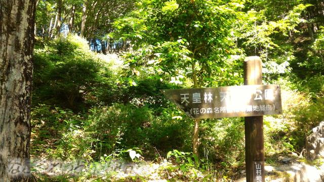 道の駅「夢さんさん谷汲」の緑地にある庭園と天皇林(岐阜県揖斐郡)