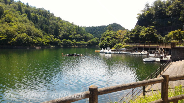 伊自良湖恋人の聖地、ボート(岐阜県山県市長滝)