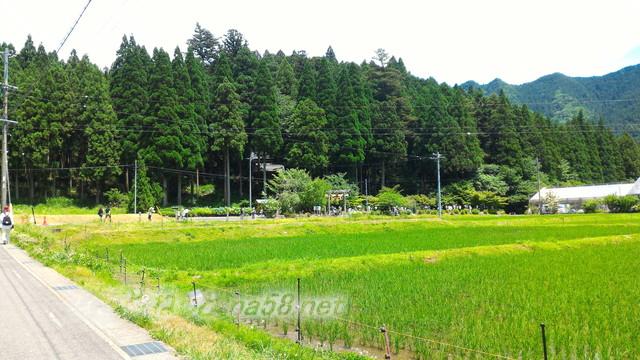 根道神社にある「モネの池」駐車場より(岐阜県関市板取)