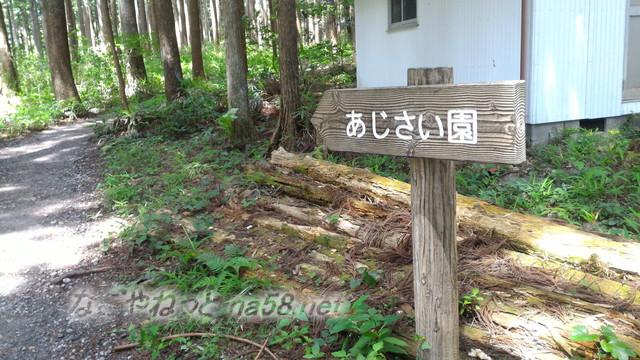 モネの池の隣、根道神社から続くあじさい園への道しるべ(岐阜県関市板取)