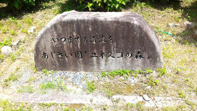 モネの池の隣、根道神社から続くあじさい園「ユネスコの森」石碑岐阜県関市板取
