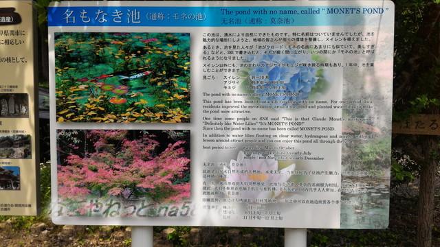 根道神社にある「モネの池」が有名になったわけ(岐阜県関市板取)
