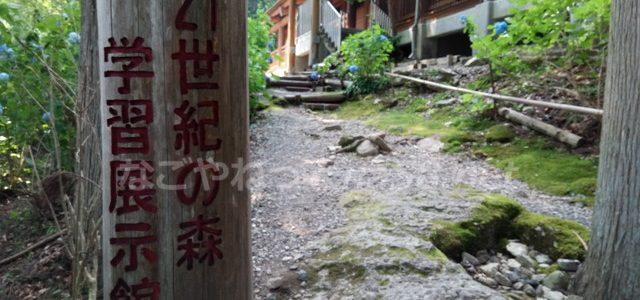 21世紀の森学習展示館・スギ杉のことならお任せ(岐阜県関市板取)
