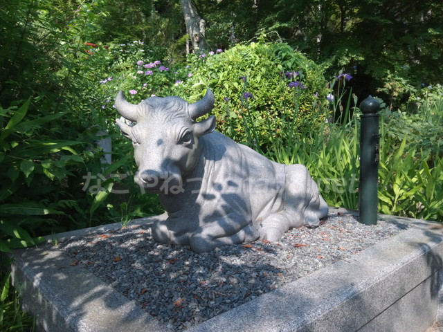 桂昌寺(岐阜県郡上市美並町)境内にある牛の石像