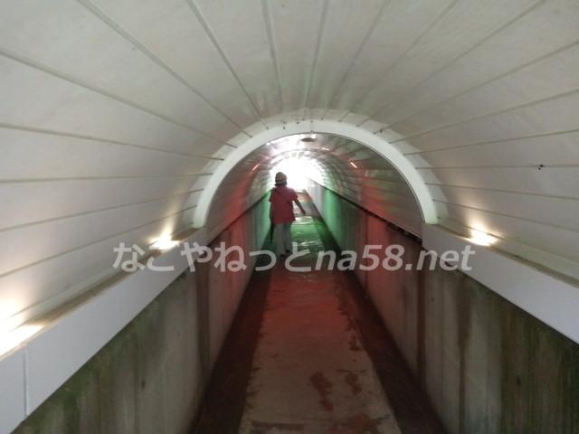みのかも健康の森で虹のトンネル(岐阜県美濃加茂市)