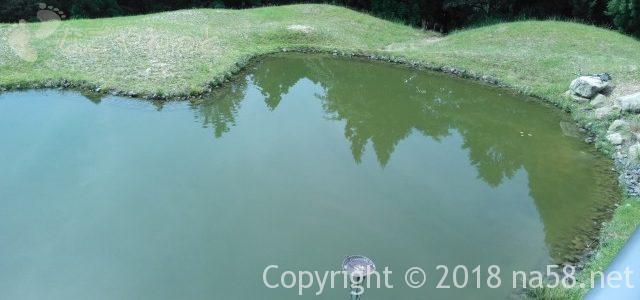 「希望荘」こころ池にコインが入って恋愛成就・すず木愛子さんの作品とお土産(三重県菰野町)