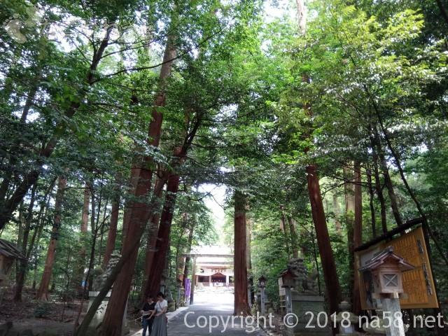椿大神社参道から本殿をのぞんで(三重県鈴鹿市)