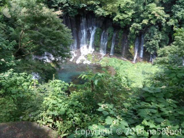 静岡県の富士宮市「白糸の滝」全容
