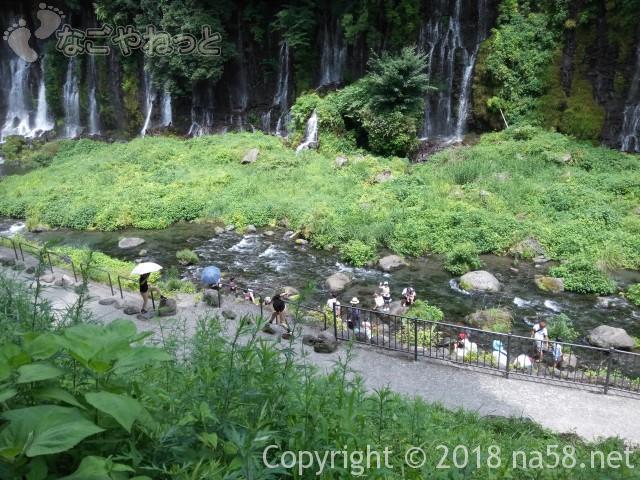 静岡県の富士宮市「白糸の滝」近景