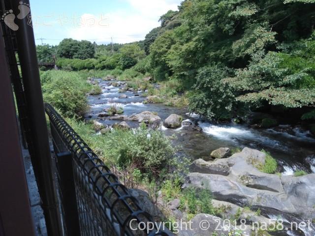 静岡県の富士宮市「白糸の滝」にある「音止の滝」の上流