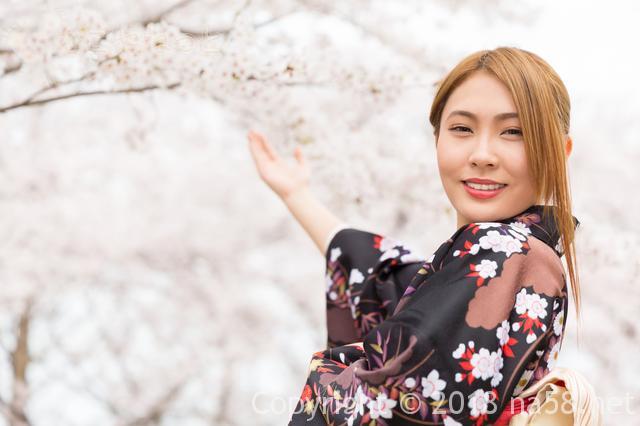 河津桜まつりの期間 2019年の見ごろは?去年の開花状況でいくと