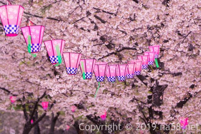 桜の開花予想2019年は?満開も予想できるよ!(1月 東海地方版)満開の桜の画像