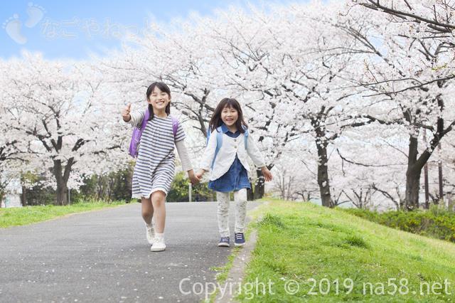 桜の開花予想2019年は?満開も予想できるよ!(1月 東海地方版)満開の桜の下で女の子二人