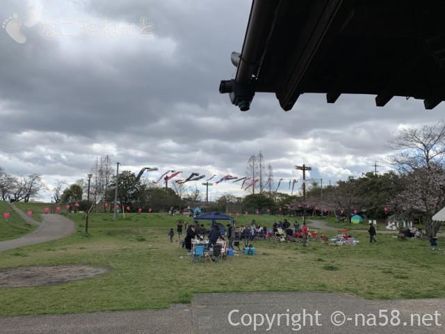 蛇池公園でお花見の人達とこいのぼり、蛇池神社より