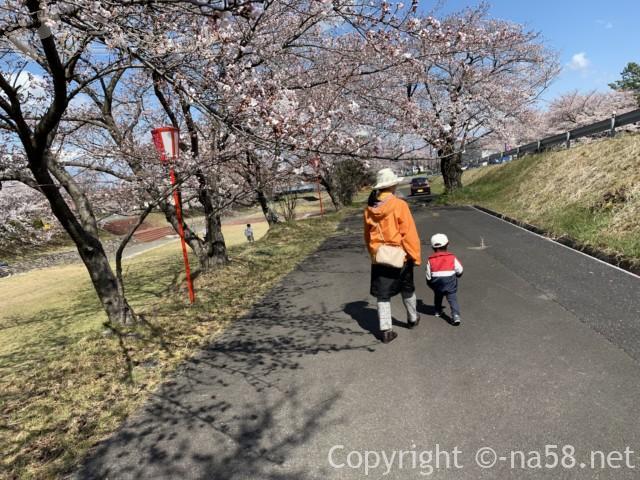 羽根谷だんだん公園(岐阜県海津市南濃町奥条)の桜並木を歩く