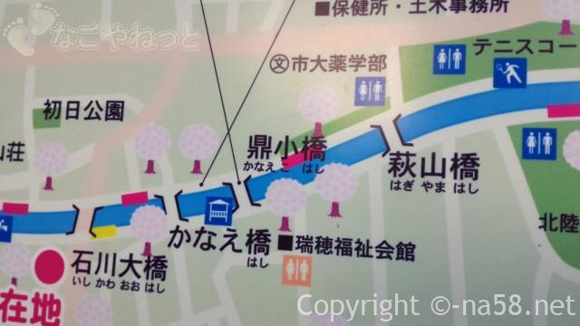 山崎川の桜花見ライトアップの場所