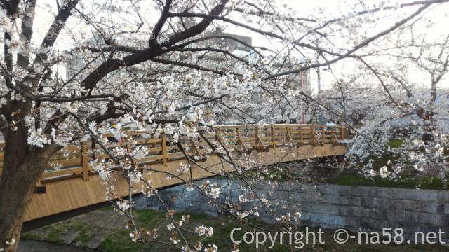 山崎川の桜花見ライトアップの場所、かなえこはし木製の橋
