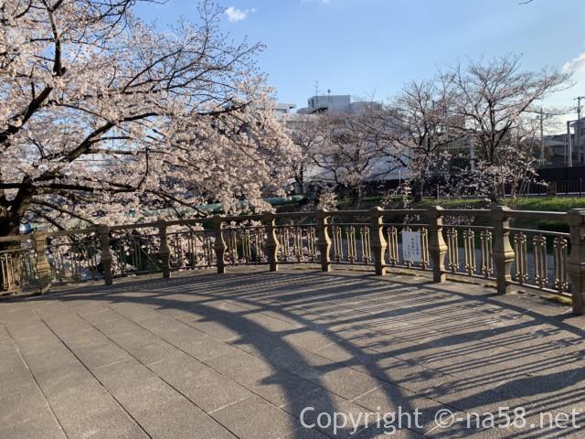 山崎川桜花見、散策路から山崎川へ張り出したデッキ