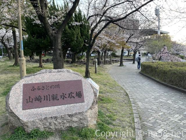 山崎川親水公園、瑞穂運動場付近