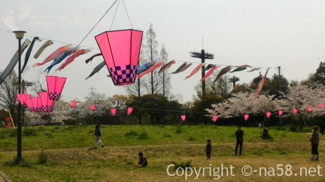 蛇池公園(名古屋市北区西区)満開の桜と広場のこいのぼり