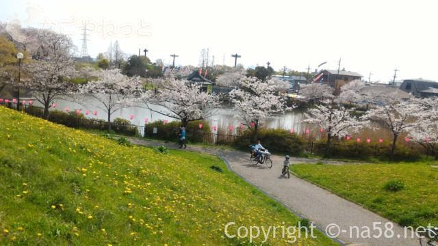 蛇池公園のと蛇池の桜満開