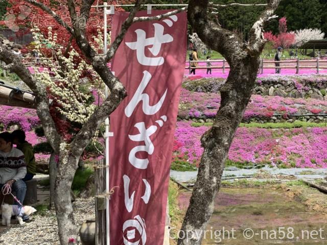 國田家の芝桜(岐阜県郡上市)、ぜんざいソフトクリームなども
