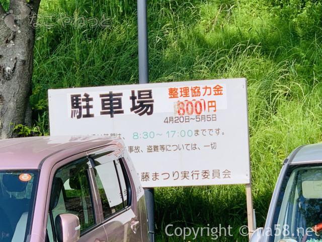 尾張津島藤まつり(愛知県津島市)有料駐車場800円
