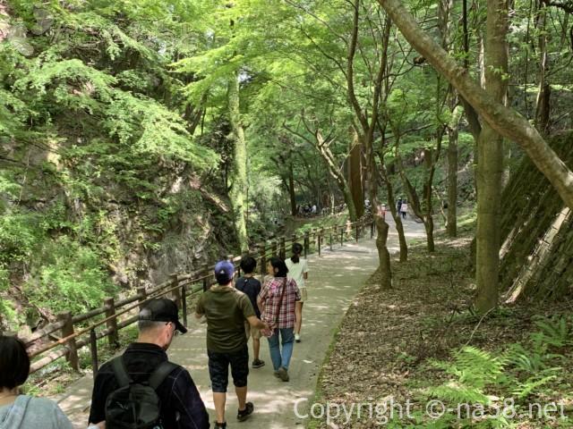 養老の滝(岐阜県養老郡養老町)養老神社へ向かう道