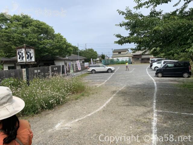 大鐘家のあじさい、駐車場(静岡県牧之原市)