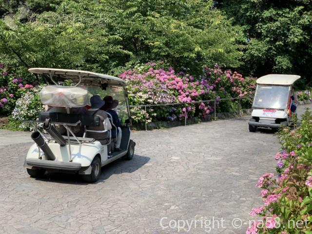 下田公園(静岡県下田市)あじさい祭の期間に送迎車が