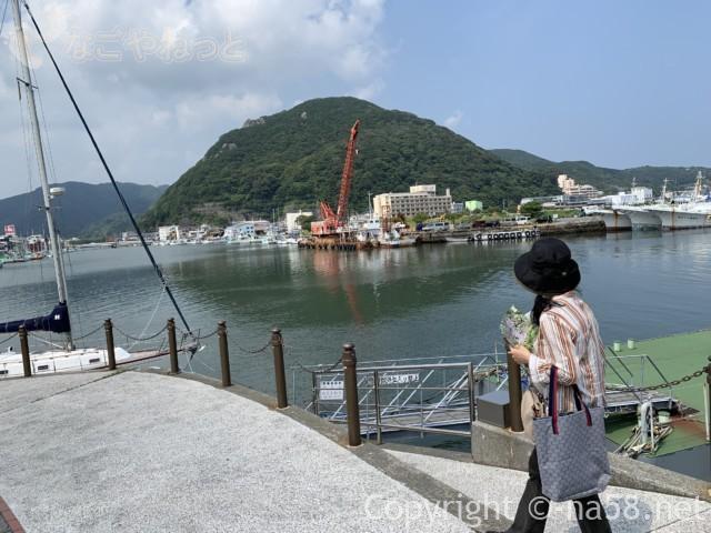 下田のペリー上陸記念碑付近から下田市魚市場方面を見る